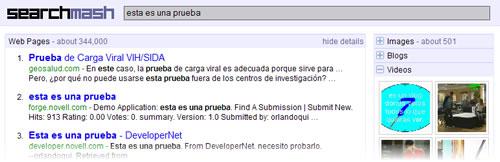 Captura de pantalla de una búsqueda realizada con Searchmash